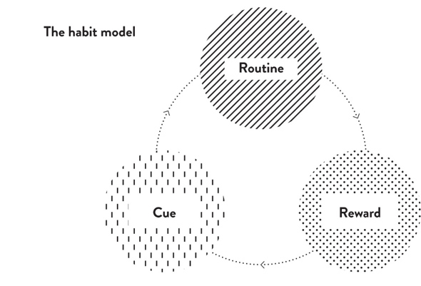 the habit model